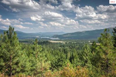 Priest River Residential Lots & Land For Sale: 3907 Us Highway 2