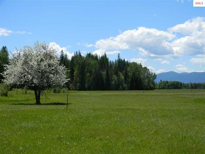 Sandpoint Residential Lots & Land For Sale: 1768 Grouse Creek