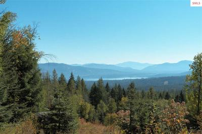 Sandpoint ID Residential Lots & Land For Sale: $119,900