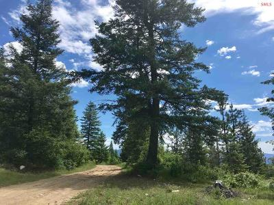 Priest River Residential Lots & Land For Sale: Nna N Whittum Rd