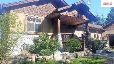 Sandpoint Single Family Home For Sale: 1131 Michael Lane