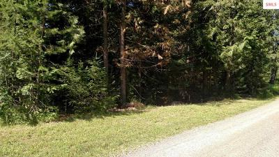 Clark Fork Residential Lots & Land For Sale: B2 L21 Bear Claw