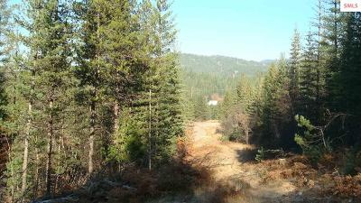 Residential Lots & Land For Sale: 125 & 127 Trail Blazer Court