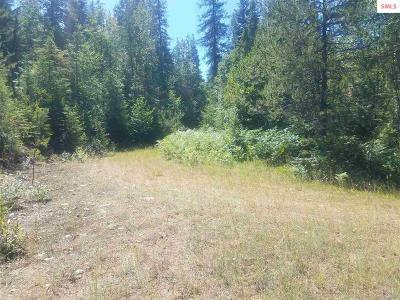 Sandpoint Residential Lots & Land For Sale: Nna Rapid Lightning Rd