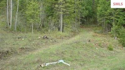 Clark Fork Residential Lots & Land For Sale: Blk 2 Lot 06 Bear Claw Rd