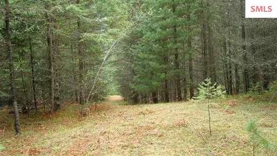 Clark Fork Residential Lots & Land For Sale: Blk 2 Lot 04 Bear Claw Rd