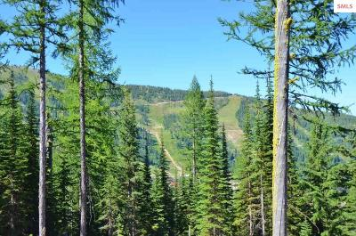 Mountainside, Schweitzer Residential Lots & Land For Sale: Lot 9a Lower Wyvern Way