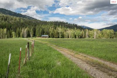 Priest Lake, Priest River Single Family Home For Sale: 1514 Blue Lake