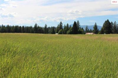 Bonners Ferry Residential Lots & Land For Sale: Tract 3b Red Cloud Road