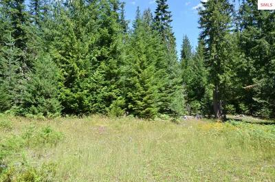 Sandpoint Residential Lots & Land For Sale: 572 Swamp Donkey Tr