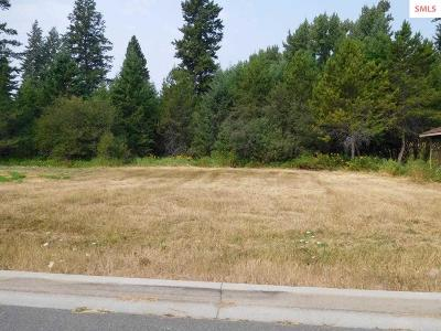 Sandpoint Residential Lots & Land For Sale: 904 Northview Drive Lot 3