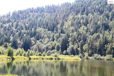 Sandpoint Residential Lots & Land For Sale: Nka Parcel 2 Pack River Flats