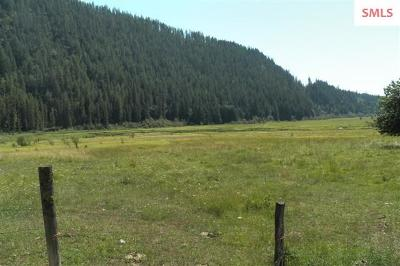 Bonners Ferry ID Residential Lots & Land For Sale: $359,000