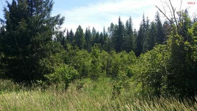 Sandpoint Residential Lots & Land For Sale: 10 Wellington Rd