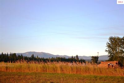 Sandpoint Residential Lots & Land For Sale: Nna Natures Way