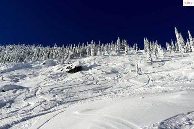 Mountainside, Schweitzer Residential Lots & Land For Sale: Nna Snowplow Road