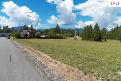 Sandpoint Residential Lots & Land For Sale: Nna Crooked Ear