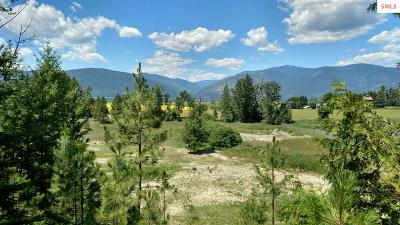 Bonners Ferry Residential Lots & Land For Sale: Lot 2b Riverside Street
