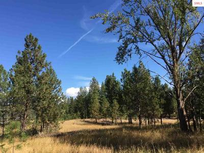 Bonners Ferry Residential Lots & Land For Sale: Lot 2e Riverside Street