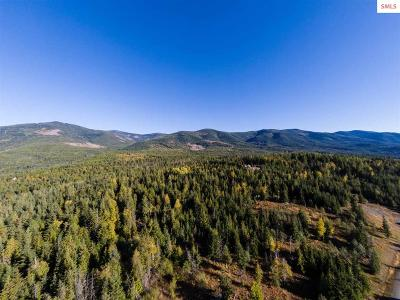 Sandpoint Residential Lots & Land For Sale: Nna Rising Hawk Ridge