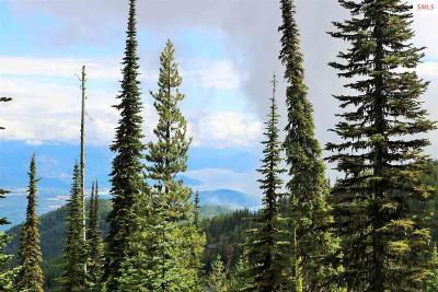 Mountainside, Schweitzer Residential Lots & Land For Sale: Nna Tall Timber B1l2