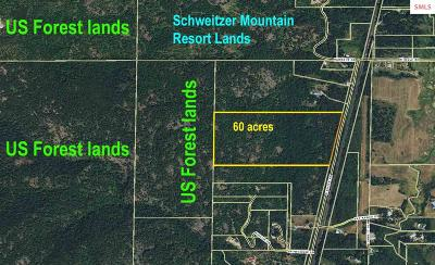 Sandpoint Residential Lots & Land For Sale: 12858 N Boyer