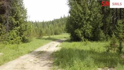 Residential Lots & Land For Sale: 3885 Gleason McAbee