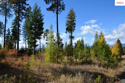 Bonners Ferry Residential Lots & Land For Sale: Lot 4 Meadow Creek Estates