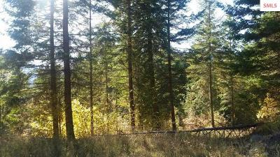 Clark Fork Residential Lots & Land For Sale: Nna Blk 2 Lot 5 Bear Claw