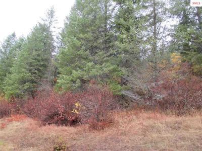 Priest River Residential Lots & Land For Sale: Nna Sno Tika