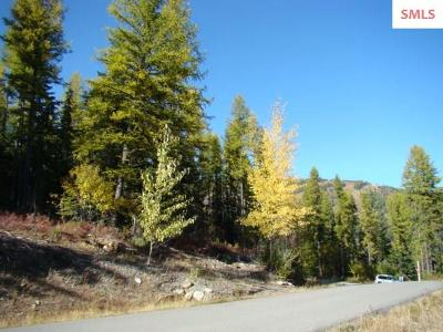 Sandpoint Residential Lots & Land For Sale: Nna Parallel Run, Lots 11 &12