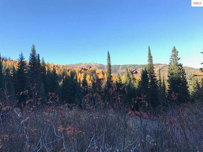 Sandpoint Residential Lots & Land For Sale: 15 Avalanche Road