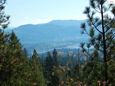 Sandpoint Residential Lots & Land For Sale: 560 Williamson Way