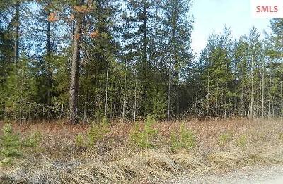 Rathdrum Residential Lots & Land For Sale: Nka Hwy 53/N Atlas Rd