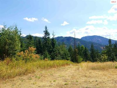 Clark Fork Residential Lots & Land For Sale: Lot 19 Majestic Mountain Rd