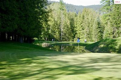 Sandpoint Residential Lots & Land For Sale: A-15 S Idaho Club Dr