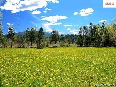 Dover Residential Lots & Land For Sale: 625 Ames Way