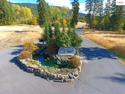 Bonners Ferry Residential Lots & Land For Sale: Lot 7 Pintail