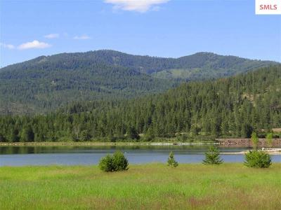 Priest River Residential Lots & Land For Sale: Lot 4 Raptor View (Talon Circle)