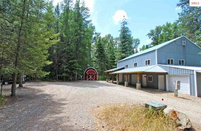 Cocolalla Single Family Home For Sale: 224 Haughey Drive (10 Acres)