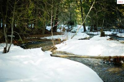 Sandpoint ID Residential Lots & Land For Sale: $39,000