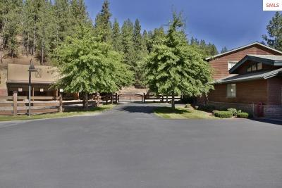 Bonner County, Kootenai County Single Family Home For Sale: 7500 N Mulholland Dr