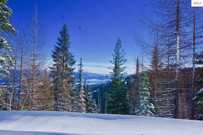 Sandpoint ID Residential Lots & Land For Sale: $115,000