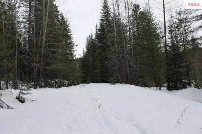 Sandpoint ID Residential Lots & Land For Sale: $120,000