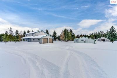 Spirit Lake Single Family Home For Sale: 1094 Torrens Trail