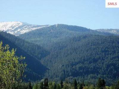 Sandpoint Residential Lots & Land For Sale: Lot 7 Llama Lane