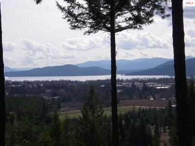Sandpoint Residential Lots & Land For Sale: Granite Ridge Rd.