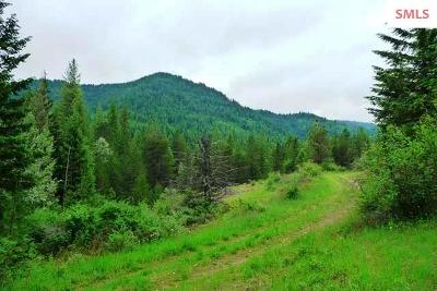 Priest River Residential Lots & Land For Sale: Nka Beaver Pond Trail