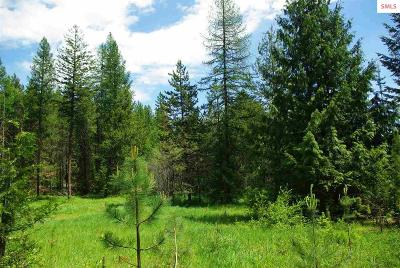 Sandpoint Residential Lots & Land For Sale: Naa Forest Knolls Dr