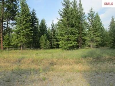 Priest River Residential Lots & Land For Sale: Lot 3 Douglas Clan